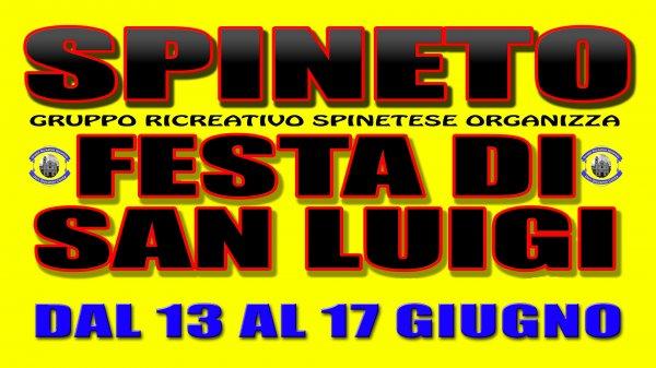 Festa di San Luigi 2017 - Spineto di Castellamonte(TO)